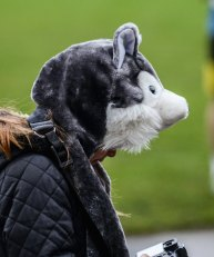 17 october 2015 husky hat