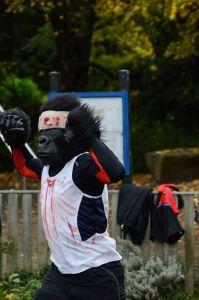primates and people alike halloween 2015