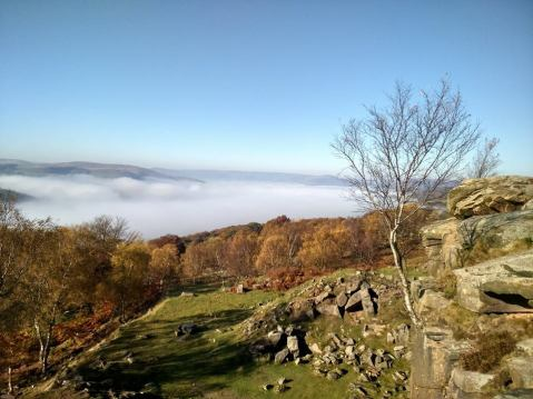 Longshaw surprise view