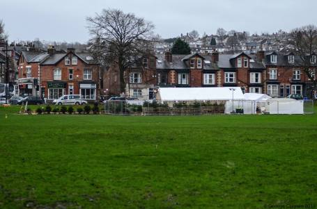 christmas trees for sale endcliffe park 5 dec 2015