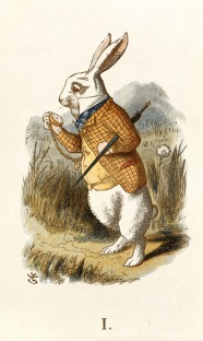 The_White_Rabbit_(Tenniel)_-_The_Nursery_Alice_(1890)_-_BL