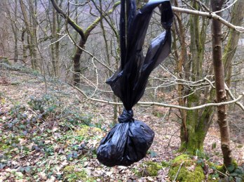 dog poo fairy never comes