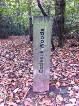 ecclesall woods sign