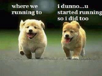 why are you running