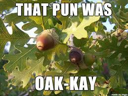 oaky pun