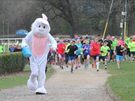 pontefract bunny