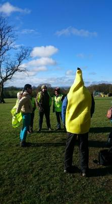 bananas are great for runners