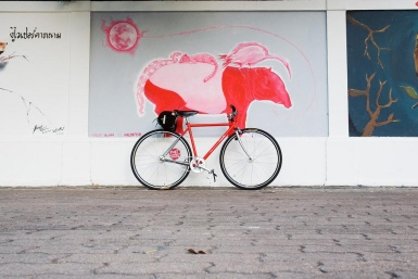 tapir on a red bike
