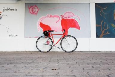 tapir on a red bike