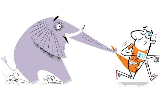 elephant_runner_2220