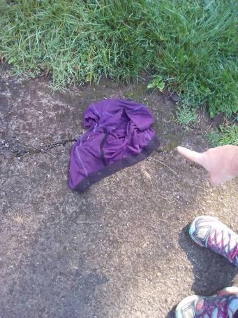 littering-is-pants