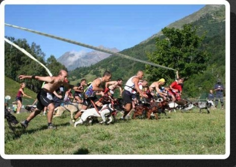 canicross-trail-runners