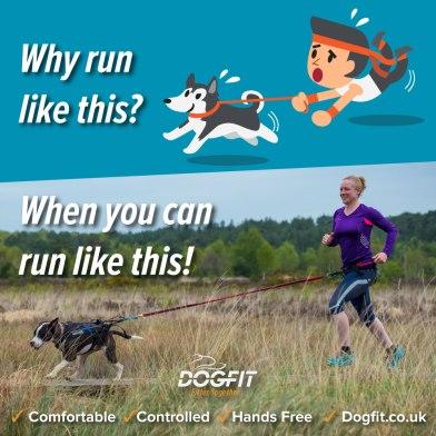 runningwith-youdog