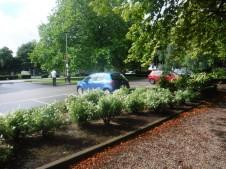 Clifton museum car park