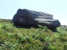 DD rocks