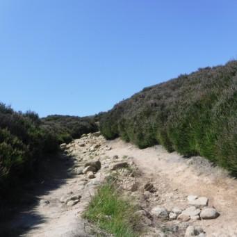 DD roman road
