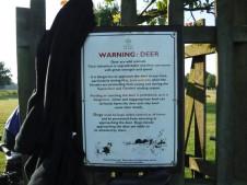 deer warning