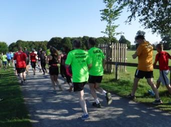 VI runner and guide