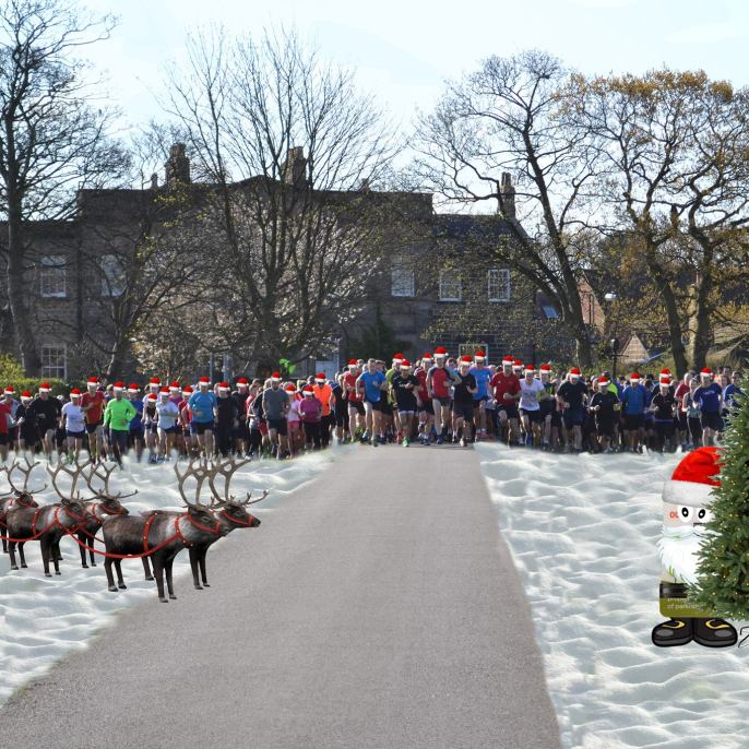 harrogate parkrun christmas profile