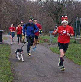 RH unleash the hounds again