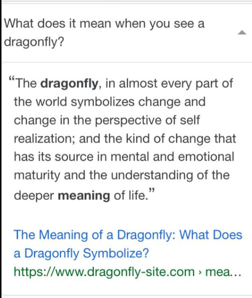 botanical dragonflies meaning