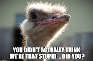 Ostrich-Head-Meme