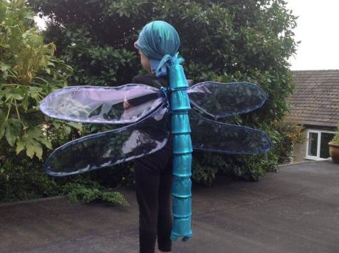 dragonfly fancy dress sorted