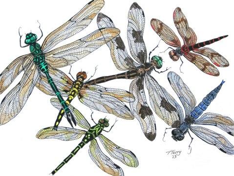 print-007-dragonflies