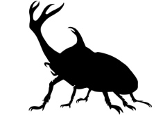 rhino beetle silhouette
