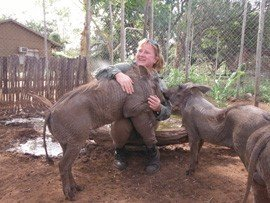 romping-with-warthogs