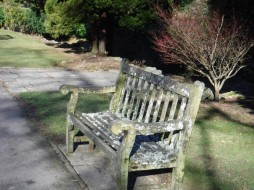 whirlow bench