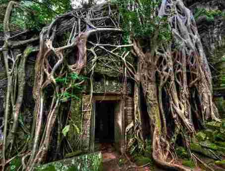 Cambodia-angkor-wat-doorway