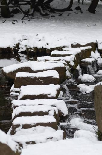 GC stepping stones along the way