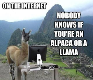 on the internet nobody knows