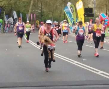 running embankment still