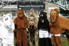 fd newcastle race course