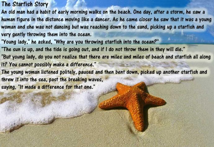 starfishstorycopy