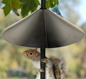 xsquirrel-baffle-bird-feeders.jpg.pagespeed.ic.1xKMe5gFve