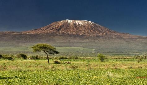 kilimanjaro_20161111_2017302642