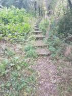 cs more steps