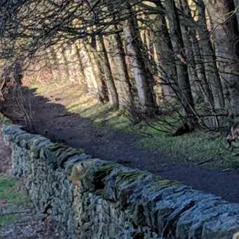 PH path