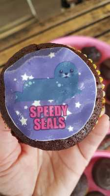 speedy seals