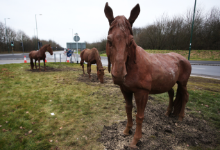 horses-on-Nottingham-Racecourse-roundabout