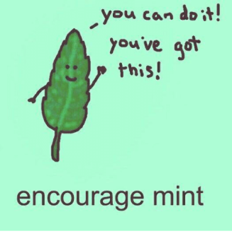 you-can-doi-you-ve-got-this-encourage-mint-34884253
